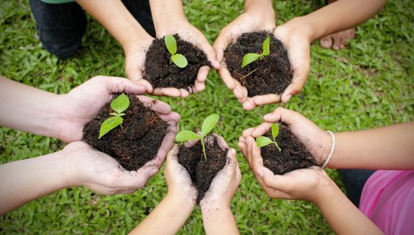 ဓာတု ပစ္စည်းများနှင့် မြန်မာ့ စိုက်ပျိုးရေး