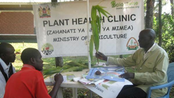 အတွေးထဲက Agricultural Mobile Clinic (AMC)