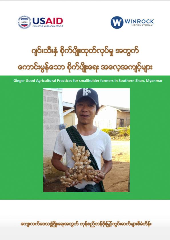 ဂျင်းသီးနှံ စိုက်ပျိုးထုတ်လုပ်မှုအတွက် ကောင်းမွန်သော စိုက်ပျိုးရေး အလေ့အကျင့်များ