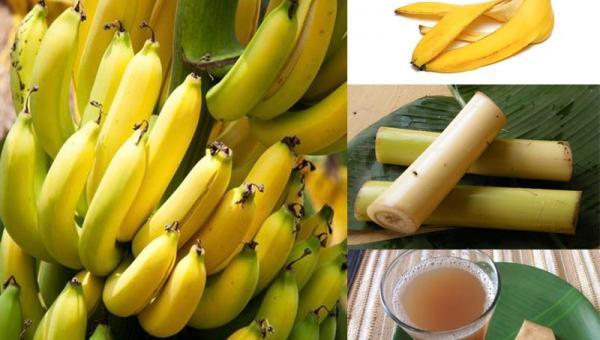 ငှက်ပျောသီး အသုံးဝင်ပုံလေးပါ