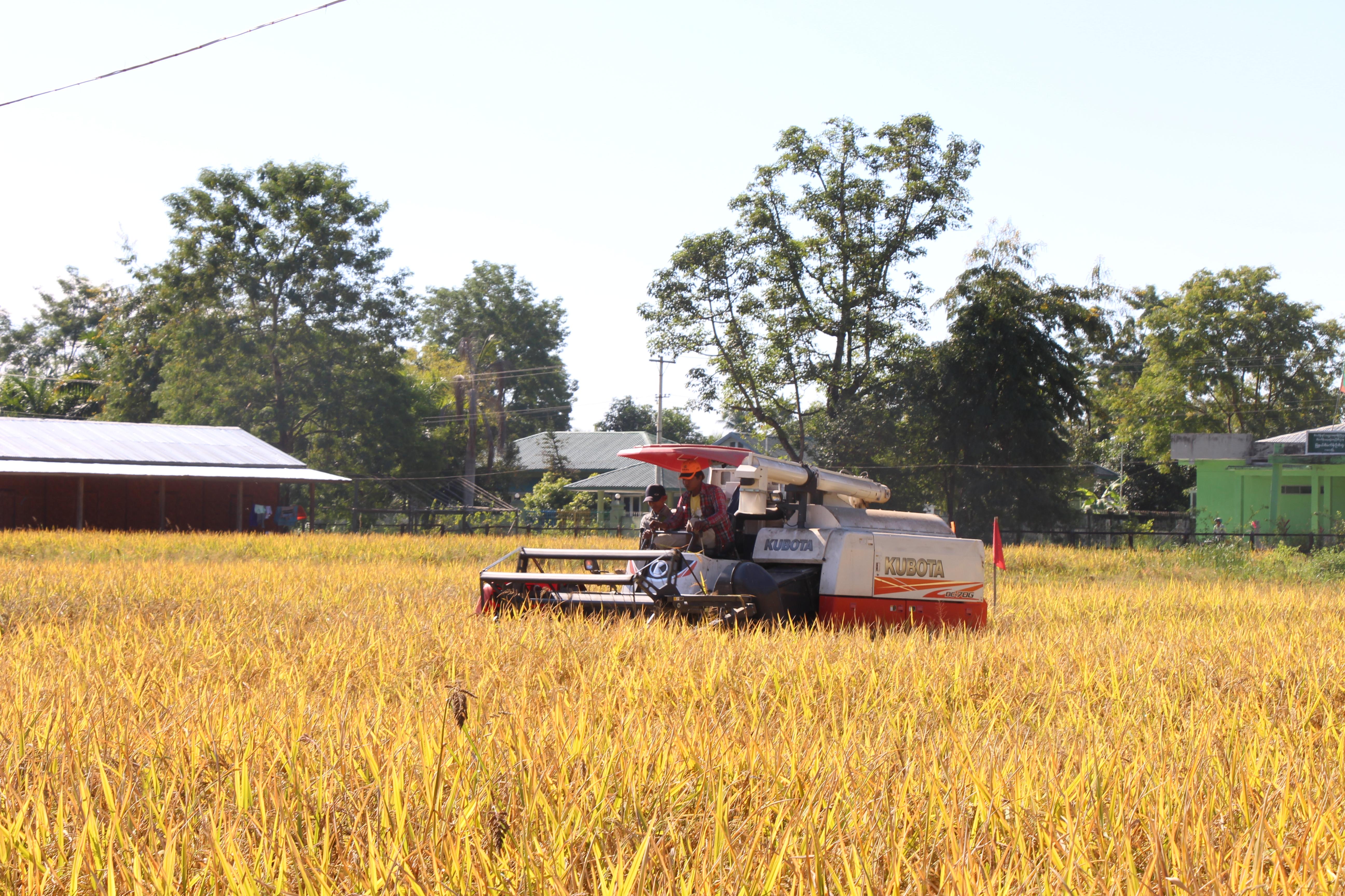 မြန်မာ- အစ္စရေး နှစ်နိုင်ငံ လယ်ယာကဏ္ဍ ဖွံ့ဖြိုးရေး ပူးပေါင်းဆောင်ရွက်မှု တိုးမြှင့်ရေးဆိုင်ရာ ကိစ္စရပ်များဆွေးနွေး