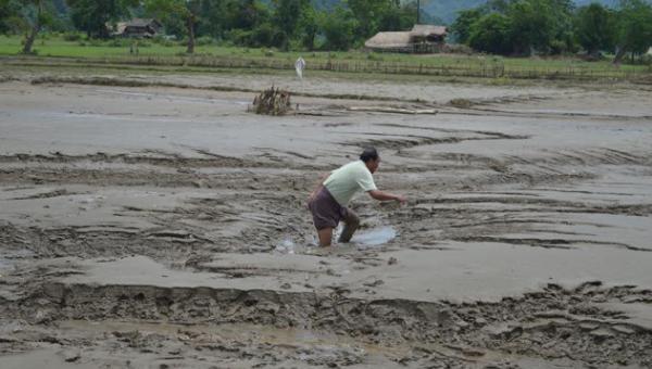 ရေလွှမ်းခံ စိုက်ပျိုးမြေများ၏ ပြသနာများနှင့် ပြန်လည်ပြုပြင်မွမ်းမံဆောင်ရွက်ရေးအတွက် ဖြစ်နိုင်ချေများ