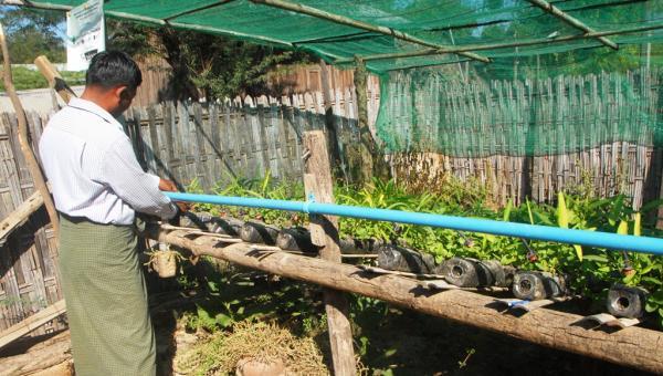 ရေအကုန်အကျ သက်သာစေတဲ့ အိမ်နောက်ဖေးကစျေးဆိုင်