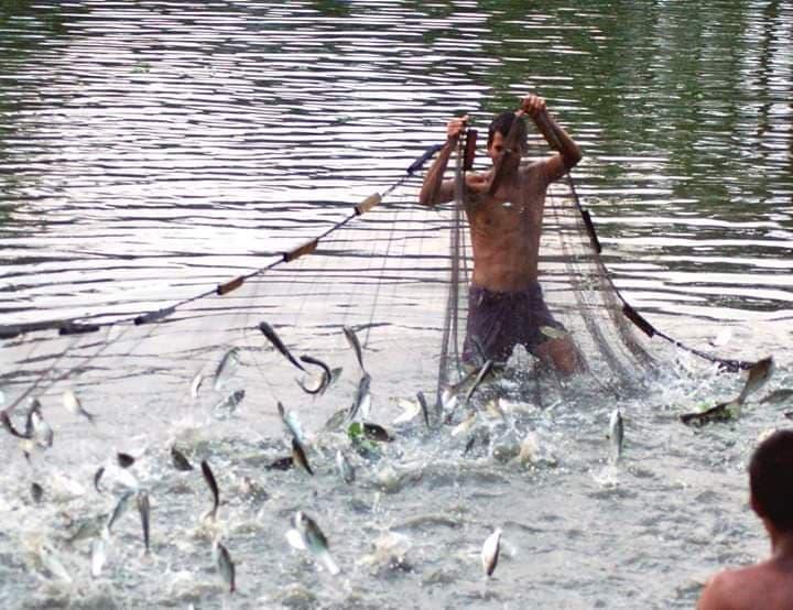 မြန်မာ့မွေးမြူရေးနှင့် ငါးလုပ်ငန်းကဏ္ဍတွင် ဂျပန်နိုင်ငံမှ ရင်းနှီးမြှုပ်နှံမှုများ ဝင်ရောက်လာရန်ရှိ