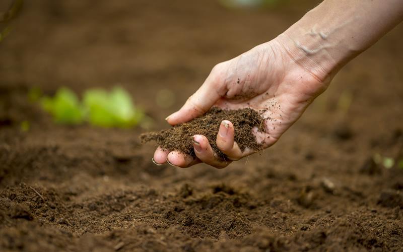 မြေဆီလွှာ ပြုပြင်ပေးခြင်းရဲ့ ကောင်းကျိုးများ