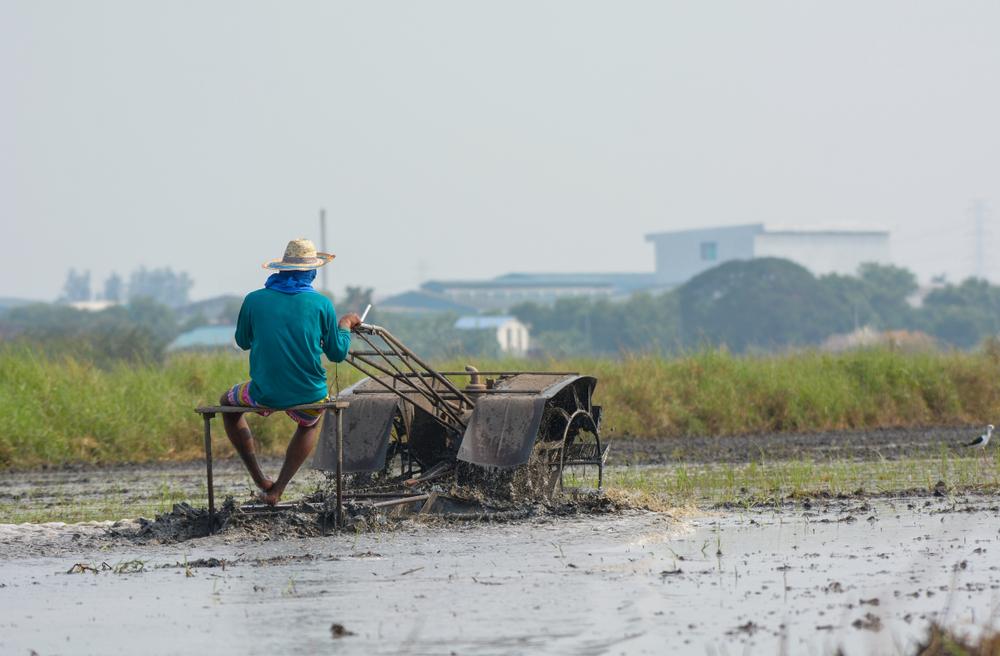 တောင်သူလယ်သမားကြီးများအတွက် နှိုးဆော်ချက် (မေလ၊ ၂၀၁၉)