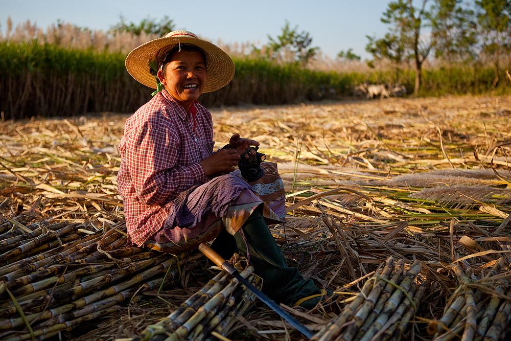 တောင်သူလယ်သမားကြီးများအတွက် နှိုးဆော်ချက် (ဧပြီလ၊ ၂၀၁၉)