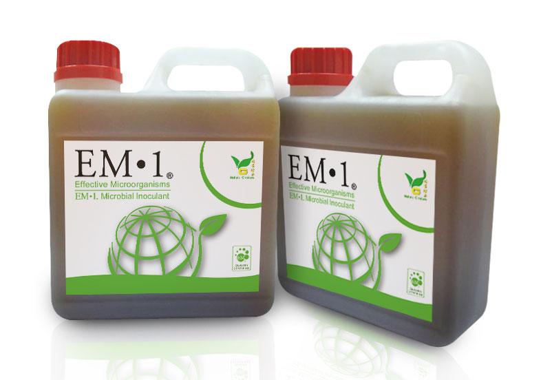 အကျိုးပြုအဏုဇီဝပိုးမွှား(EM) အဆင့်ဆင့်ပွားနည်းများ