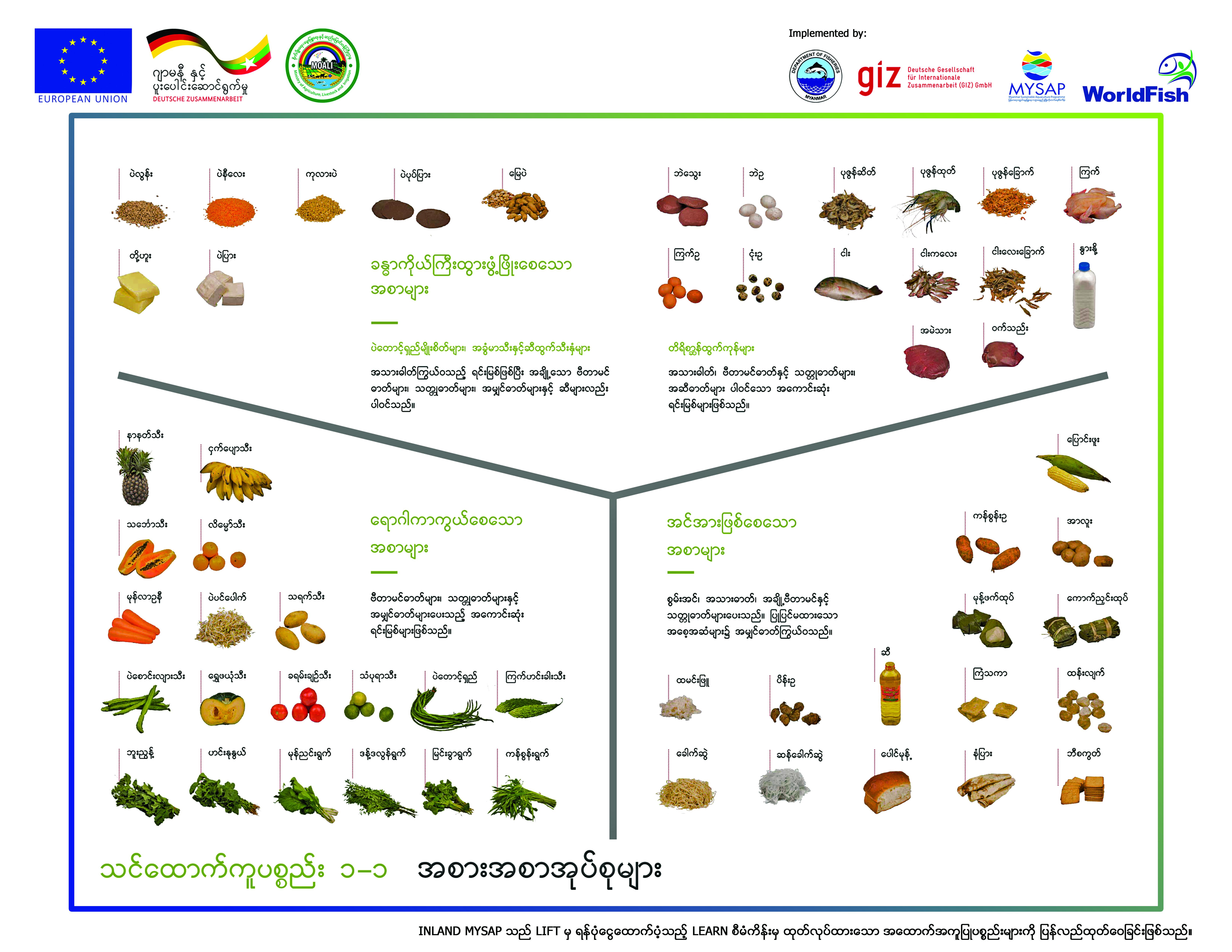 သင့်တင့်မျှတအောင်စားသုံးသင့်သော အစားအစာအုပ်စုများ