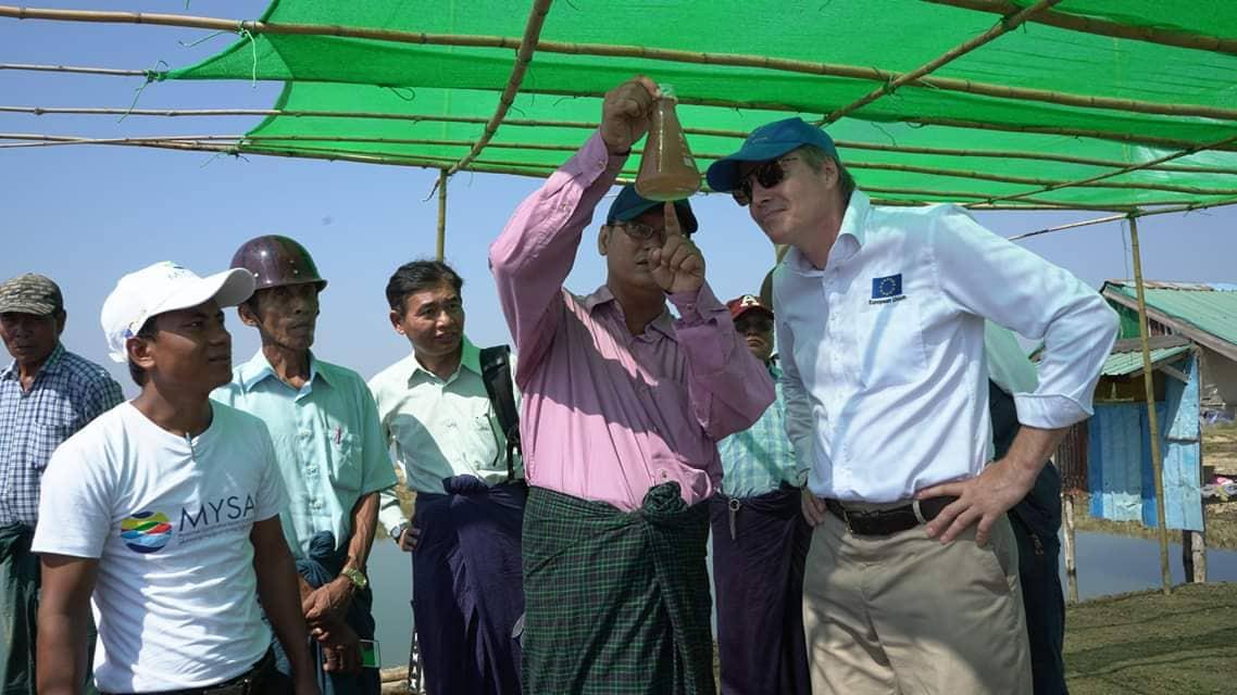မြန်မာ့ရေသတ္တဝါ မွေးမြူရေးကဏ္ဍမှ လပွတ္တာမြို့နယ်ရှိ အာတီးမီးယား မွေးမြူလုပ်ကိုင်သူကို အာတီးမီးယားဥ အခြောက်ခံစက် ပံ့ပိုးပေး