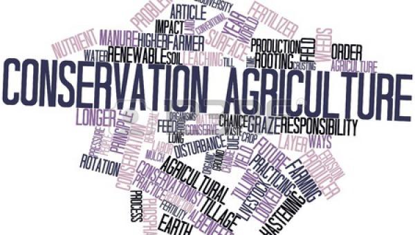 သဘာဝဝန်းကျင်မပျက် စိုက်ပျိုးရေး