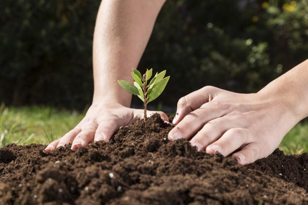 စိုက်ပျိုးရေးဖြင့် စီးပွားတက်စေဖို့ (၁)